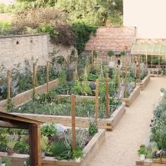 Kitchen Garden Tidy